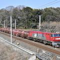Photos: 安中貨物 (EH500-31)