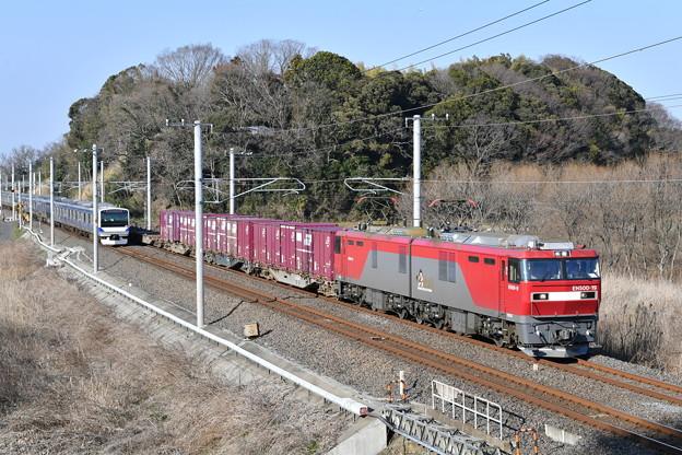 貨物列車 (EH500-19)