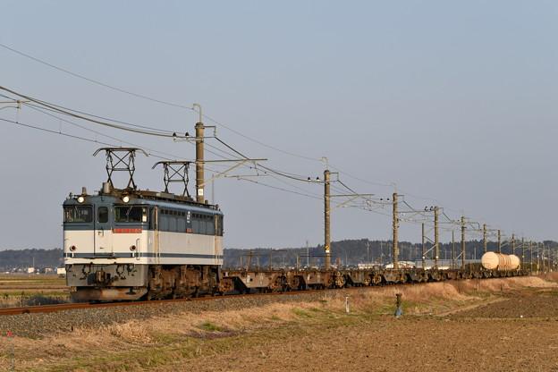 貨物列車 (EF652080)