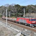 貨物列車 (安中貨物@EH500-13)