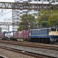 Photos: 貨物列車 (EF652066)