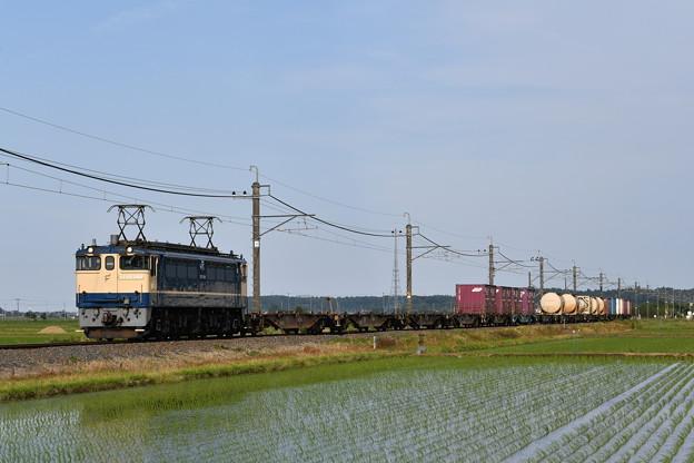 貨物列車 (EF652101)