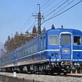 Photos: SL大樹5号 後追い (14系客車)