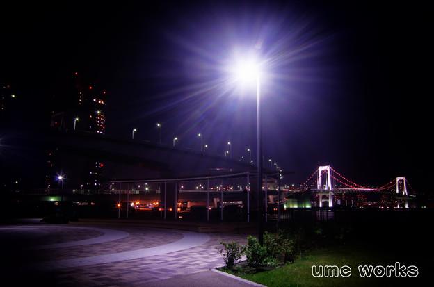 写真: 有明北緑道公園