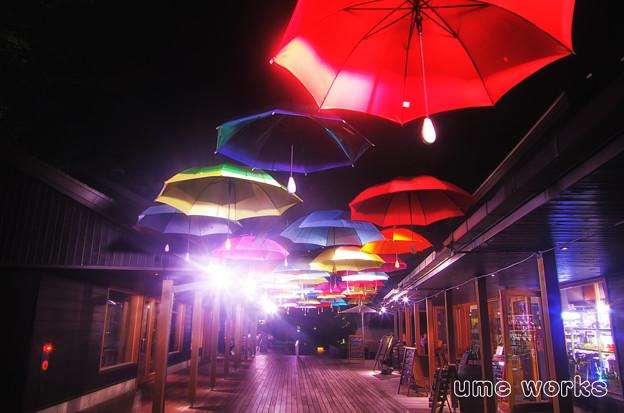 Mid Night umbrella