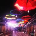 Photos: Mid Night umbrella
