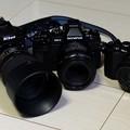 Photos: 100-0652
