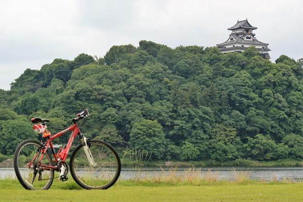 対岸から犬山城を望む