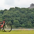 Photos: 対岸から犬山城を望む