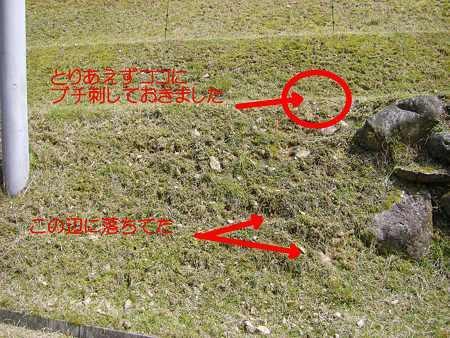 墓標の位置