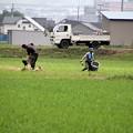 写真: 農作業中01-12.07.06