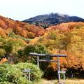 Photos: 紅葉・八甲田山01