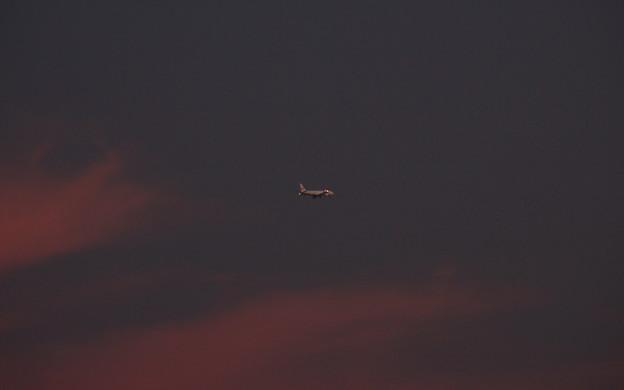 夕焼けを飛ぶ06