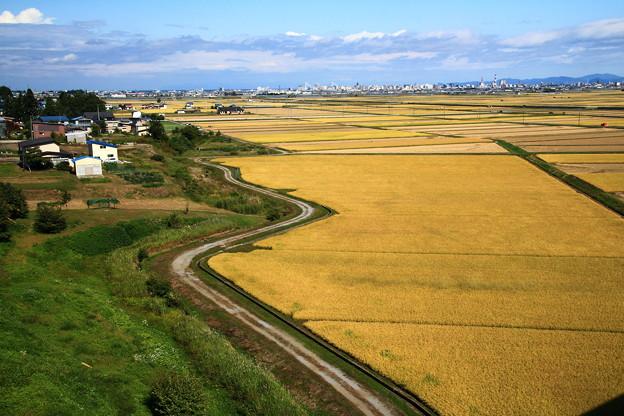 田園風景01