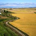 Photos: 田園風景01