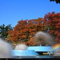 紅葉と噴水01