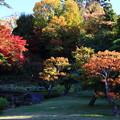 庭園の紅葉02