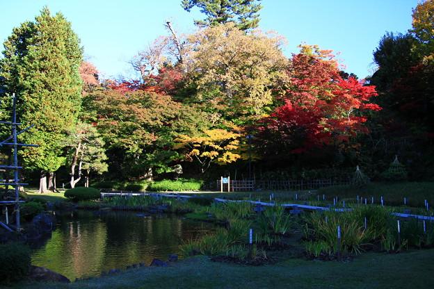 庭園の紅葉03