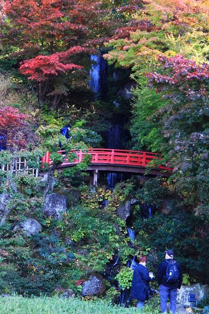 庭園の紅葉05