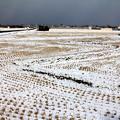 Photos: やがて雪原に07