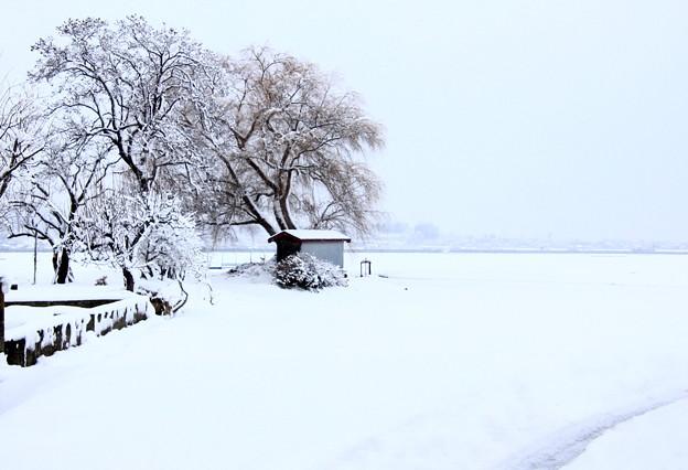 雪化粧01