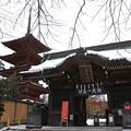 Photos: 仁王門と五重塔01
