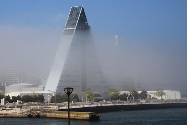 Photos: 濃霧に包まれて01