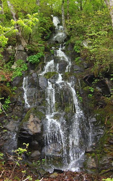 新緑と滝01