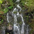 Photos: 新緑と滝01