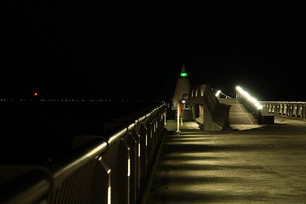 埠頭の夜景1