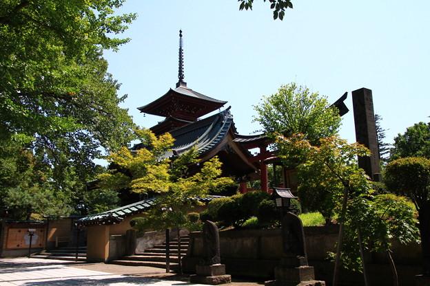 仁王門と五重塔