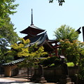 Photos: 仁王門と五重塔