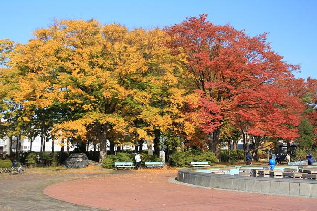 紅葉・平和公園7