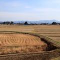 Photos: 晩秋の田園風景