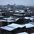 Photos: 雪降る頃