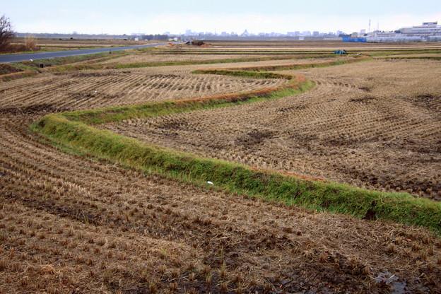 雪の消えた田園