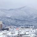 Photos: ー4℃以下の雪景色