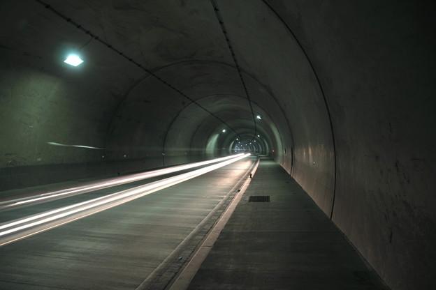 夏泊ほたて海道トンネル