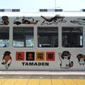 写真: たま電車(2)