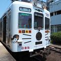 写真: たま電車(3)