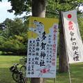 Photos: 多賀神社 (札幌市)