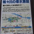 Photos: 札幌の鴨々川遊水場IMG_0464