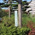 Photos: 札幌市厚別区青葉町5丁目2番IMG_0468