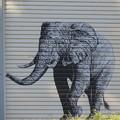 Photos: 住宅地に象さんIMG_0488