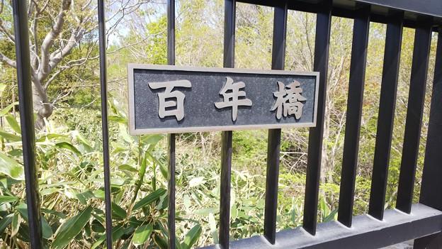 百年橋DSC_0305