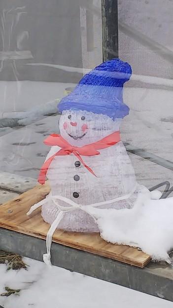 雪だるまDSC_0427
