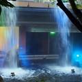 Photos: 大阪シティ庭園