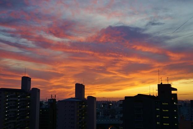 夕空晴れて秋風吹き