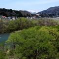 若葉の利根川の三国方面風景
