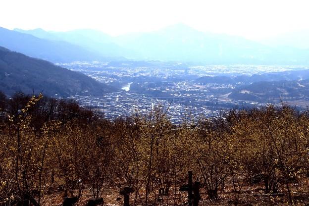 宝登山の山頂よりの風景
